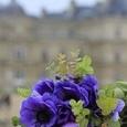 Parisで束ねたマリアージュブーケの画像1