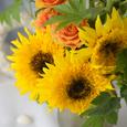 Sunflower* ひまわりの似合う季節の画像2