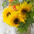 Sunflower* ひまわりの似合う季節の画像1
