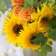 Sunflower* ひまわりの似合う季節の画像5