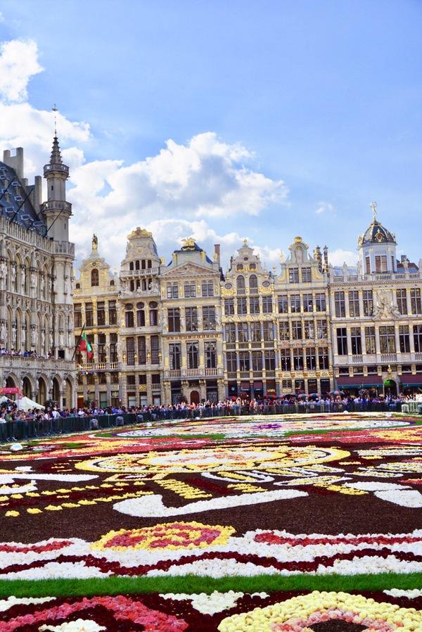 ベルギーのフラワーカーペット2018