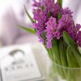 大好きなヒヤシンスの香りの画像2