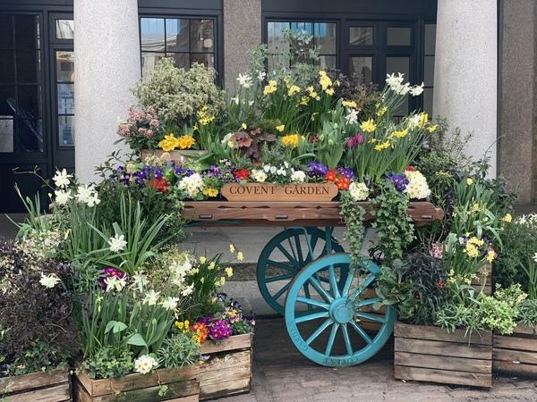 春のロンドン散策